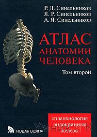 Синельников  Атлас анатомии. В 4-х томах Том 2 (Новая волна)