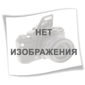 Домогацких  География 10 класс Учебник часть 1. (10-11 класс.) (РС)